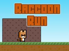 Raccon Run